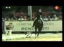 Anky van Grunsven Salinero,Turin European Championships 2007