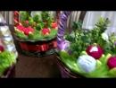 корзины с тюльпанами из конфет Рафаэлло. Другие цвета