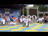 Открытый турнир по адаптивному каратэ в рамках Фестиваля Спорт без границ посвященному Дню Семьи, Любви и Верности.