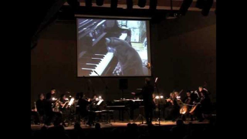 CATcerto Pervyj Baltijskyj Kanall ru Nora The Piano Cat Mindaugas Piecaitis