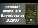 Neunaber Immerse Reverberator Demo Including Kill Dry Switch