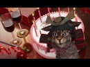 Анимационные открытки с днем рождения скачать бесплатно. Видео открытки.