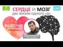 Сердце и мозг две жизни одного Я Ритмолог Андрей Шиверский