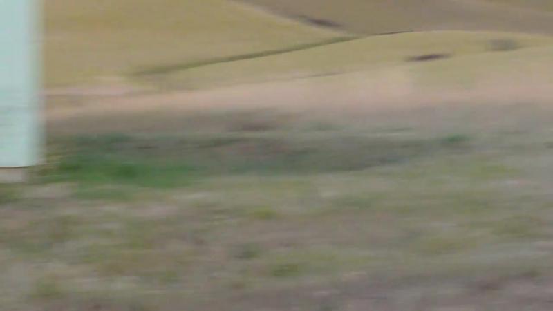 SG-43 Gory Beltfed goryunov Semi auto