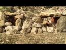Охотники за Караванами