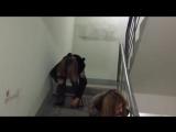 Бухая малолетка упала vk.com byxaipim (360p)_2