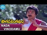 Sagara Sangamam Songs - Nada Vinodamu Natya Vilasamu Song  Kamal Haasan, Jayaprada  Ilayaraja