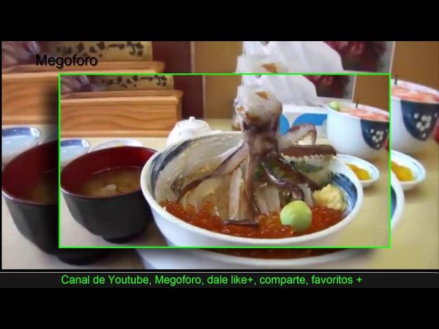 Japon comen pulpo vivo comerias esto extrañas costumbres