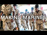 Making Marines 12 Weeks of United States Marine Corps Recruit Training