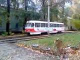 Самарский трамвай Tatra T3 №796