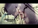 Strangeness and Charm Doc Wynonna
