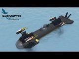 WORLD'S FIRST Autonomous Hybrid UUV/UAV