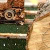 Станки Деревообрабатывающие I Купить недорого