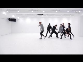 BTS - 피 땀 눈물 (Blood Sweat Tears) Dance Practice.480