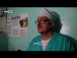 Боец ЛНР получил тяжелое ранение, а его товарищ погиб в ходе очередного обстрела карателями