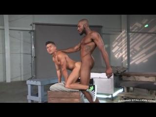 Гей секс noah donovan and armond rizzo