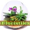 Флористика в Самаре