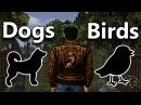 Shenmue Music: FREE 1 | Dog Bird Sounds 🐶🐦