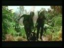 Хорта - Біжи Forest Gump