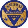 """Ветеринарная клиника в Томске """"ВЕЛЕС"""" 53-33-43"""