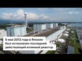Реакция распада: что происходит с ядерной энергетикой в мире