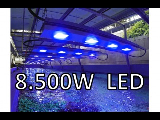 Lumaxity LED Lights over 40,000 liters reef tank
