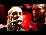 Serj Tankian - Saving Us live