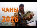 Рыбалка на озере Чаны 2016. Ловля окуня на воблеры Коsadaka и виброхвосты Lucky John.