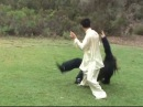 Tai Chi Application in Traditional Yang Long Form 1