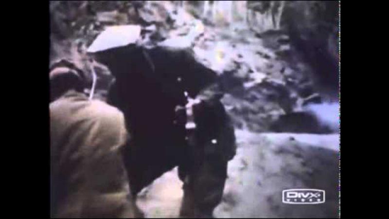 Песни Афгана В Петлюра Последний рейс