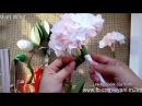 Hydrangea paper flower tutorial Hoa cẩm tú cầu bằng giấy nhún ver 2016