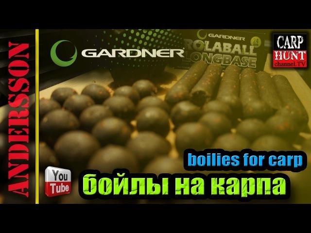 Изготовление бойлов из мяса улитки [Хорватский рецепт] » Freewka.com - Смотреть онлайн в хорощем качестве