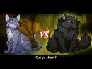 Jayfeather vs Yellowfang. Epic Rap Battles of Warriors 7