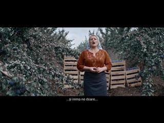 Show Must Go On - Молдавские фермеры о перспективах . Старые песни о главном