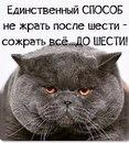 Олеся Филиппова-Амирова фото #12