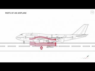 Как летают самолеты? Доступно об аэродинамике для юных авиаторов