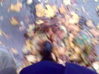 тянка ходит по листикам