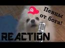 Реакция | Животные - ЛУЧШИЕ РЕМИКСЫ