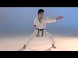 Enoeda Otta Sensei Kata 1 - 10 Heian Shodan - Jion