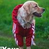 Одежда Для Собак  Украина  Бренд YSH
