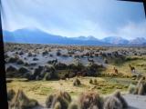 А.Савенко. Реликты Перу и Боливии ч2