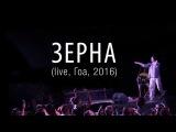 ОдноНо  Зерна (live in GOA)