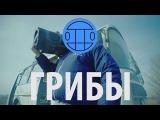 Грибы - Тает Лёд  Кавер ВПЦСП Каскад