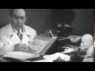 Секретные материалы. История Апитерапии в России.