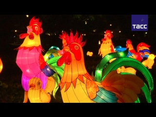 Китай готов к встрече года Красного Огненного Петуха