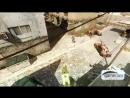 Strike - CoDJumper CoD4 all bounces Showcase