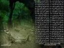 Foziljon qori-Zino haqida maruza 1chi qsim_low