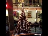 Instagram video by Л а м о н о в а
