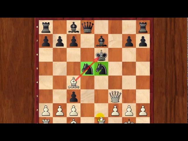 3 СМЕРТЕЛЬНЫЕ ошибки шахматистов