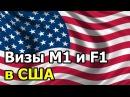 Студенческие визы M1 и F1 в США.Поиск жениха в Америке.Замуж за Американца
